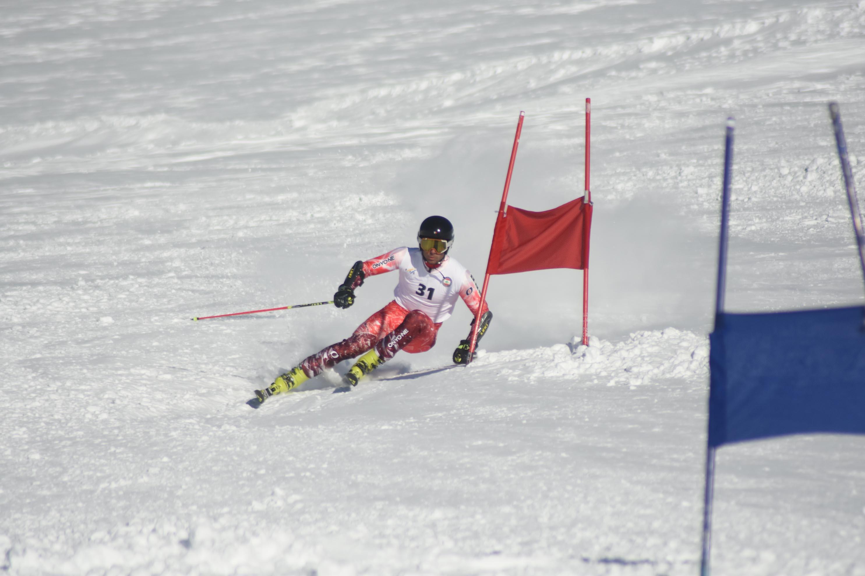 1484326791_ski