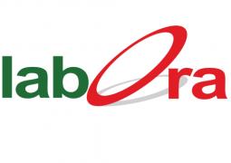لابورا – قسم القطاع العام